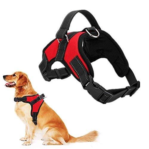 Regolabile Cani Animali Pet Rope Cane Dog Harness,Pettorina per Cani Traspirante Confortevole Durevole Imbracatura per la Corsa, Passeggiate, Jogging-Red-M