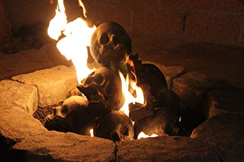 """Epic Flame 10 Skull Kit for roughly 24"""" Gas fire Pit"""