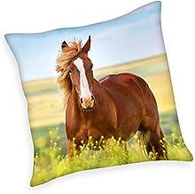 Herding Young Collection - Cojín (40 x 40 cm, 100% poliéster, 40 x 40 cm), diseño de Caballo, Multicolor