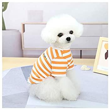Loyanyy T-shirt for Small Medium Dog Cute Puppy Clothes Colorful Cat Shirt Breathable Pet Apparel Cotton Kitten Clothes Orange Small Tag M