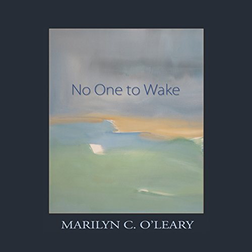 No One to Wake audiobook cover art