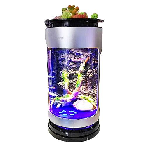 Zixin Aquarium Aquaponics Ökosystem Goldfish Bowl Eco-Zylinder Kleiner Wasser-Garten-Dekor mit LED-Licht und Filterpumpe, for Kinderzimmer Office Home