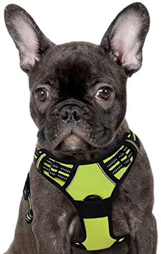 Dog Harness No Pull Walking Pet Harness with 2 Rings and Handle Adjustable Reflective Breathable Oxford Soft Vest Easy Control Front Clip Harness for Small to Large Dogs (Small, Green)