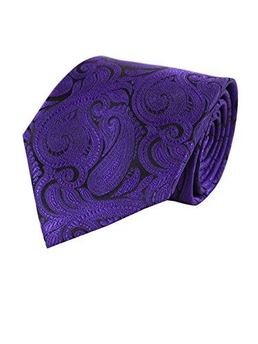 Men's Paisley Microfiber Poly Woven Wedding Neck Tie