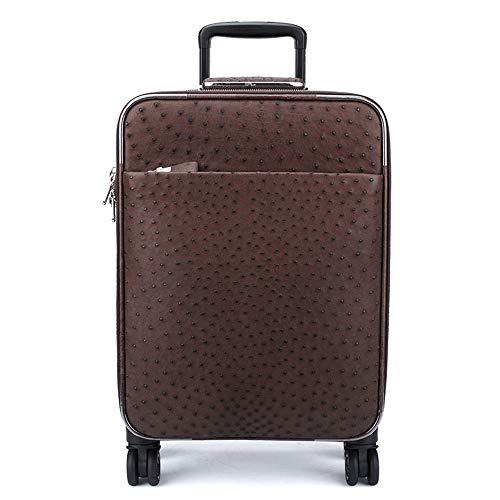 WHSS Mochila al aire libre de piel de avestruz, funda de cuero marrón, funda de vuelo, maleta de hombre (35 x 19,5 x 45 cm)