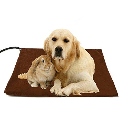 Berocia cama perro grande gato mascota colchoneta manta Cojín de calefacción Cama eléctrica animal antiarañazos manta electrica Protección de sobrecalentamiento (grande 50 x 50 cm)