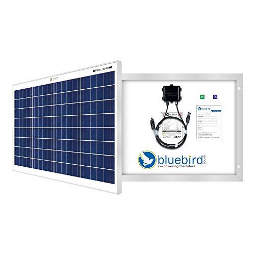 Bluebird Solar 50 Watt - 12 Volt Poly Crystalline Solar Panel | BIS Certified | High Efficiency | 5BB A+ Grade Solar Cells |...