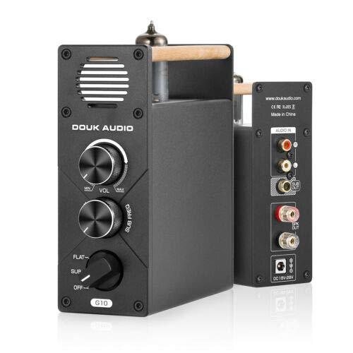 Douk Audio G10 Mini Mono Subwoofer / Voll Frequenz-Verstärker Tube Amplifier Desktop Audio Amp