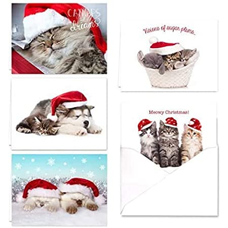 Santa Cat Personalized Christmas//New Year//Holiday Party Thank You Cards
