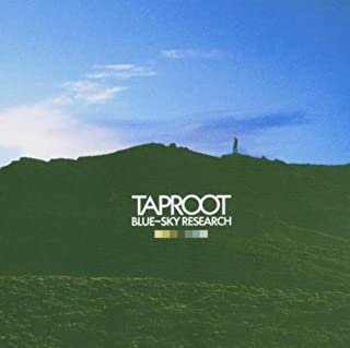 Best taproot blue sky research Reviews