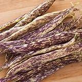 Dragon Tongue Bush Bean Seeds - Packet of 20 Seeds