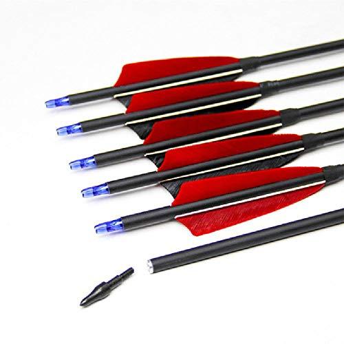 BAIYANG 12 Stück Wirbelsäule 500 Gemischte Carbon Pfeile Echte Feder Recurve Compound Bow Hunting Shooting Bogenschießen 31Inches 80cm