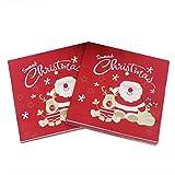 Bozaap 60 servilletas de Papel Desechables para cóctel, servilletas de Papel Decorativas para Navidad, Vacaciones, cenas, Suministros de Fiesta
