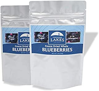 Thousand Lakes Freeze Dried Fruits and Vegetables - Blueberries 2-pack 1.2 ounces (2.4 ounces total) | No Sugar Added | 10...