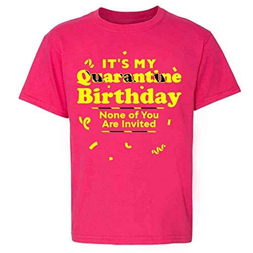 Its My Quarantine Birthday No Ones Invited Funny Pink L Youth Kids Girl Boy T-Shirt