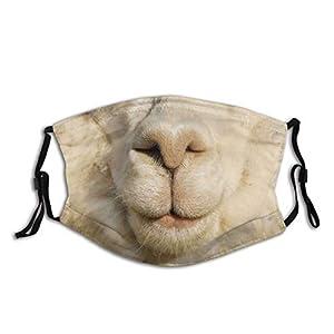 XCNGG Bocca di tigre divertente naso di maiale bocca maschera facciale, passamontagna alla moda, sciarpa riutilizzabile, lavabile regolabile antipolvere