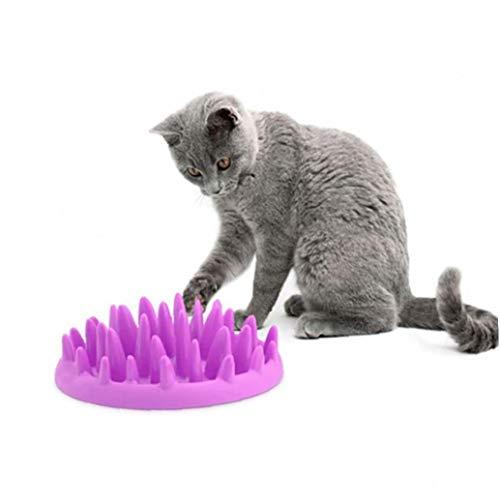 AYRSJCL Catch Perro de Mascota Interactivo silicón Duro Alimentadores Cat Kitten Slow...