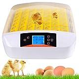 Couveuse Automatique de 56 œufs de Poules ou Canards à Affichage Digital de la température, Incubateur Automatique Mini LED et contrôle de l'humidité pour Couver Poule, Canard, Caille (56 œufs)