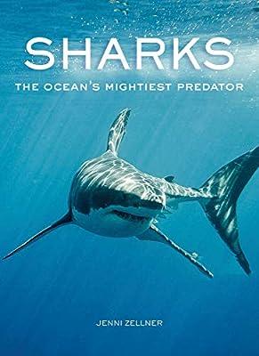 Sharks: The Ocean's Mightiest Predator