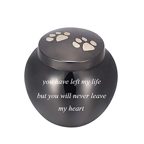 Cremation Urn for Ashes Edelstahl Haustier Urne für Hund Katze Erinnerung Asche Schmuck Urne mit Sie Werden nie Mein Herz verlassen Memorial Urnen