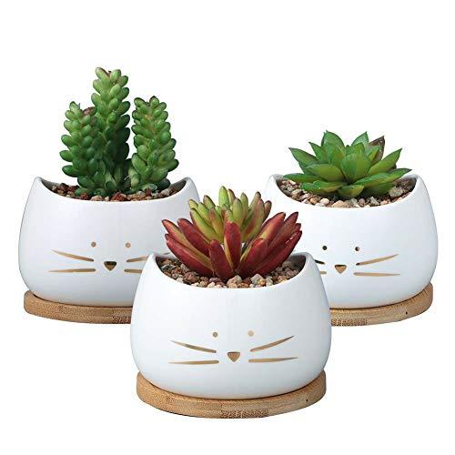 Lot de 3 Petit Pots De Fleurs Cactus Chat Blanc + 3 Coupelles En Bois, Cache Pot, Jardinière, Plantes Grasses, Cactus, Plante Verte Bureau D'un Collègue, Rebord Fenêtre Extérieur Et Intérieur, Balcon