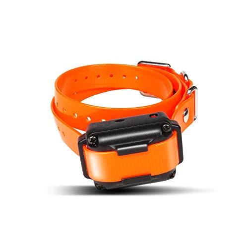 Dogtra IQ Plus Additional Receiver Orange Strap