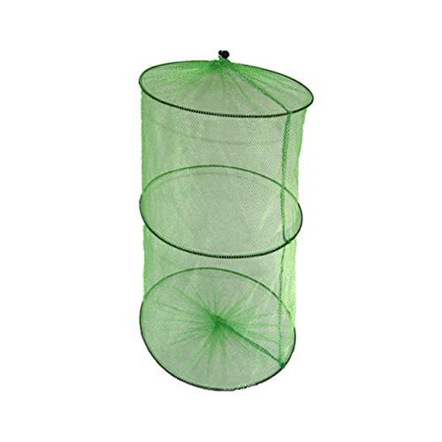 ChenCheng 2 Schichten Tragbarer Fischnetz-Fisch-Garnele Kult Cage Cast Net Angeln Trap-Netzwerk Faltbare Fischnetz-Gerät 50 x 30 cm /@ (Color : Green)