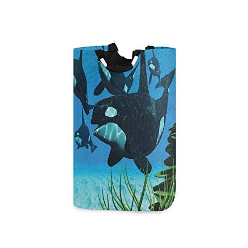 BEITUOLA Laundry Basket,Pod Of Killer Whales Swim Along Reef Looking For Fish Prey Ocean,Portable Washing Basket,Laundry Hamper with Handle,Storage Bag,Laundry Bin,Large Capacity,Collapsible