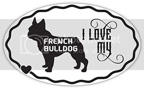 Makoroni I Love My French Bulldog, CAR Magnet-Magnetic Bumper Sticker 3x5 or 4.5x7.5 inc, DesR74