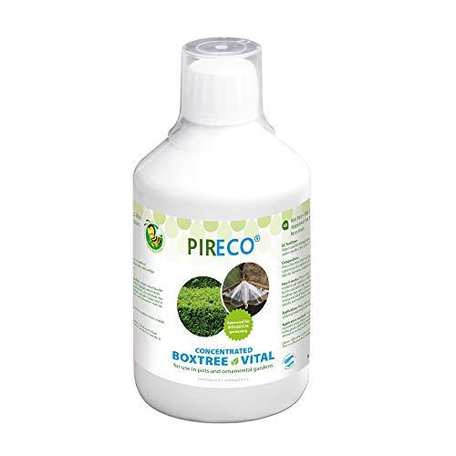 Pireco Buchsbaumzünsler Bekämpfung Buxus Vitaal | Bio Pflanzen Schädlingsbekämpfung | 500 ml