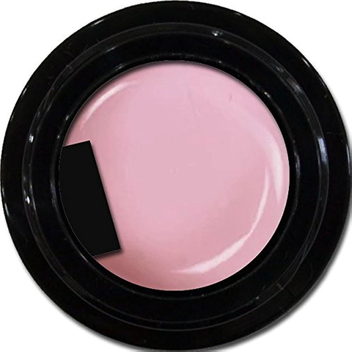 服を洗う艦隊気晴らしカラージェル enchant gel color gel S501 Sheer Lilac 3g/ エンチャントジェル カラージェル S501シアーライラック 3グラム