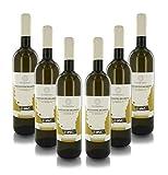 Villa Walter Fontana Vino Blanco Racconto Segreto, Sauvignon Blanc Alpi Retiche IGT, Cosecha 2019, Caja de 6 Botellas de 75 cl. Cada Una