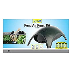 best air pumps for fish ponds