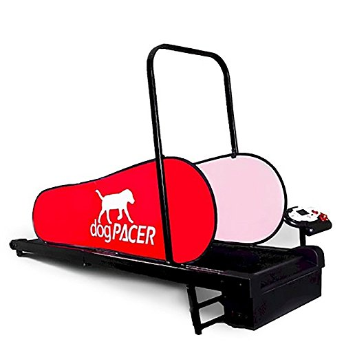 DogPacer Mini Treadmill
