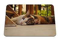 26cmx21cm マウスパッド (猫は平野に横たわっています) パターンカスタムの マウスパッド
