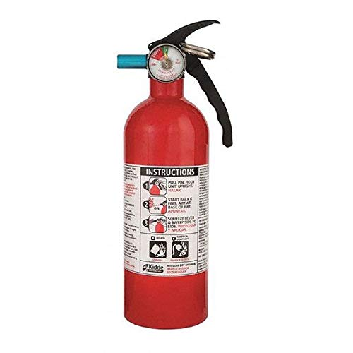 Fire Extinguisher, 5B:C, Dry Chemical, 2 lb, 11