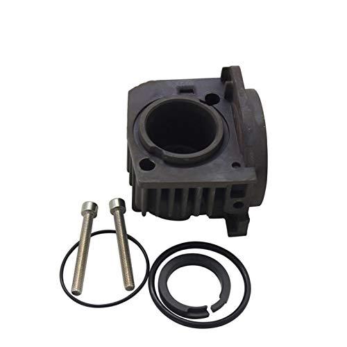 ZhengELE For Audi A6 C6 Q7 Touareg Cayenne suspensión de Aire del compresor de la Bomba de pistón Culata Ring O Anillos Tornillo 4L0698007A 7L0698007D (Color : C6 Q7 E53 L322)