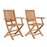 Amazonia London Teak Folding Armchair