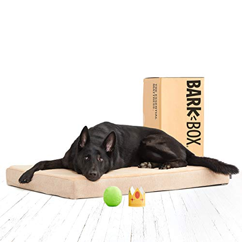 BarkBox Memory Foam Platform Dog Bed | Plush Mattress for Orthopedic Joint Relief | Machine Washable Cuddler with Removable Cover and Waterproof Lining | Includes Squeaker Toy | Sand | XL