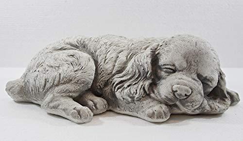 Beton Figur Hund Cocker Spaniel Welpe H 10 cm Hundefigur liegend und schlafend Gartenfigur