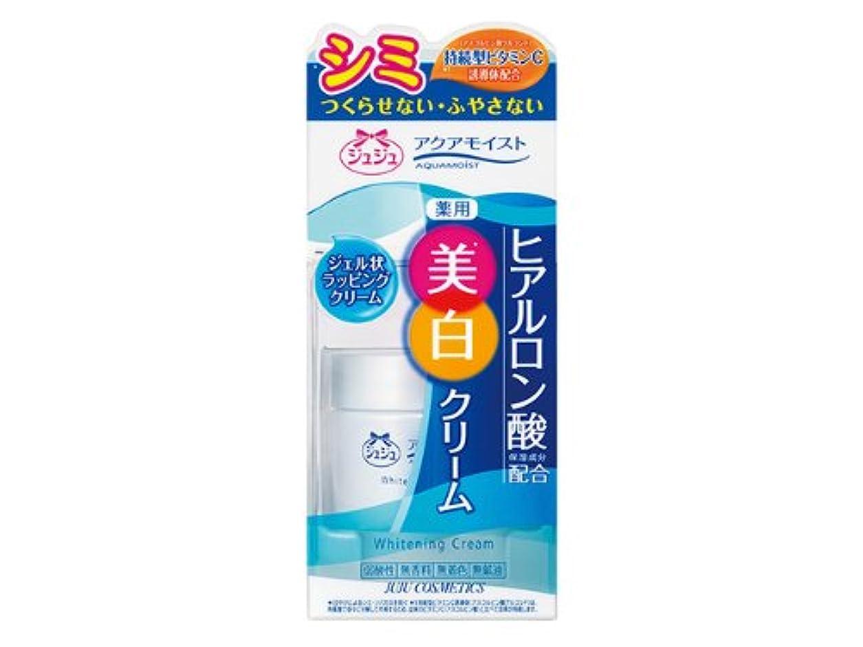 ガレージ全国頑固なアクアモイストC 薬用ホワイトニングクリームH 50g 【医薬部外品】