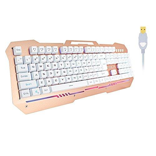 AULA Endless wasserfest USB Gaming Tastatur für LOL und andere elektronischen Spiele Player mit RGB LED Flash Hintergrundbeleuchtung (Silber)