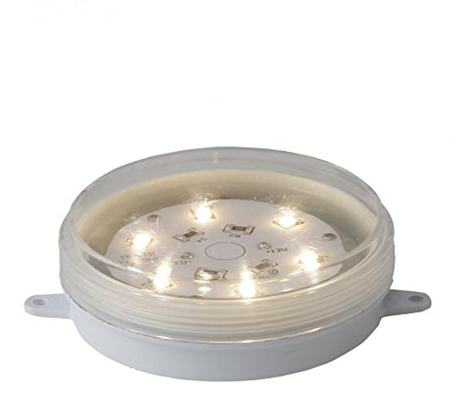 メンタリティピカソ小数タカショー HBE-Y01W LEDコアモジュール (1/f庭ゆらぎ)
