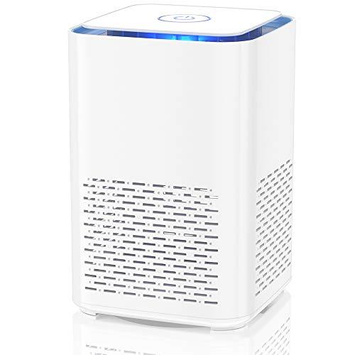 Duomishu Purificador de Aire para Hogar con Filtro HEPA  Purificador de Aire Portatil 100% Sin Ozono  Difusor de Aroma Filtración  para Polvo  Bacterias  Humo  Polen  Caspa de Mascotas  Olor a Cocina