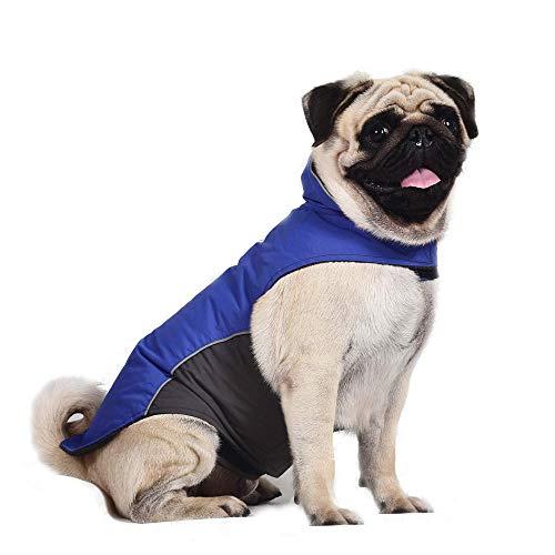 QKEMM Abrigo de Cachorro de Invierno Chaqueta Tira Reflectante Impermeable con Orificio de Tracción con Velcro Ropa de Perro para Perros Pequeños y Medianos Azul Oscuro XL