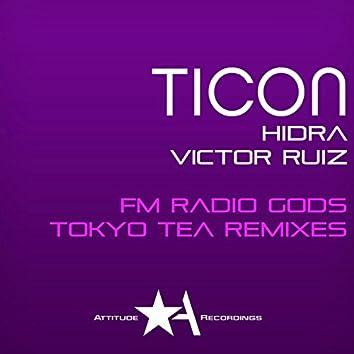 Tokyo Tea Remixes