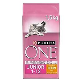Purina One BIFENSIS Junior 1-12 Cat Food Kitten Dry Rich in Chicken Pack of 6 (6 x 1.5 kg)