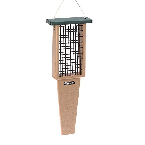 Birds Choice 2-Cake Pileated Suet Feeder with Green Top