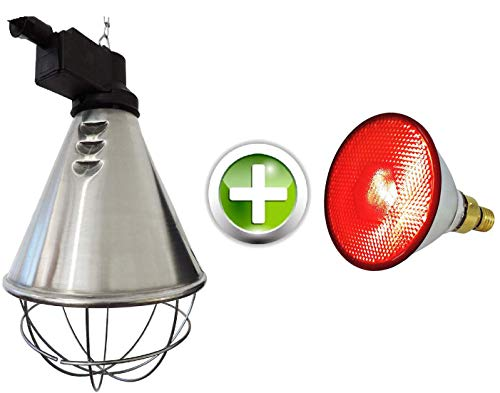 Eider Infrarot Wärmestrahler Profi inkl. 100 Watt Energiesparlampe - Made in Germany - für Küken, Ferkel, Welpen etc. - 30% Energiekosten Ersparnis
