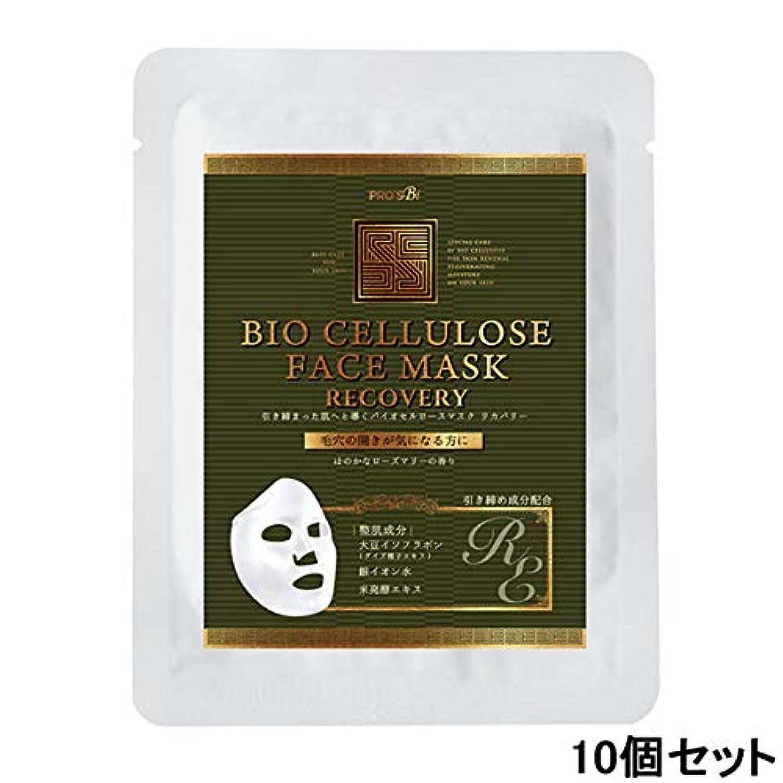 アラブサラボマイナーディスパッチプロズビ バイオセルロースマスク リカバリー (10個セット) [ フェイスマスク フェイスシート フェイスパック フェイシャルマスク シートマスク フェイシャルシート フェイシャルパック ローションマスク ローションパック 顔パック ]